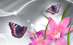 Picture flowers, collage, butterfly, Lily, petals
