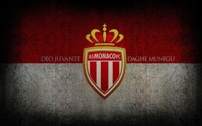 Picture wallpaper, sport, logo, football, AS Monaco FC