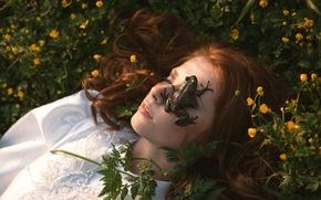 Picture summer, girl, frog, sleep