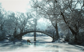 Picture winter, trees, bridge, protein, fawn, 3d graphics, 3DLandscapeArtist, frozen river