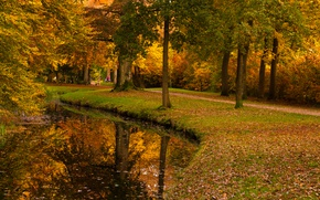 Picture autumn, leaves, trees, pond, Park, yellow, Netherlands, path, Utrecht, Baarn