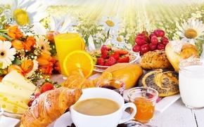 Picture flowers, coffee, orange, chamomile, cheese, milk, strawberry, juice, honey, grapes, tulips, honey, flowers, cakes, Coffee, …