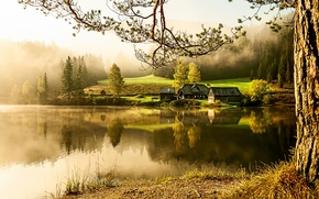 Picture lake, home, morning, village