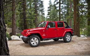 Picture Red, Trees, Forest, Jeep, Sahara, Wrangler, Jeep
