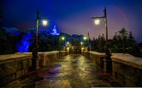 Picture night, castle, FL, lights, USA, USA, Disneyland, Orlando, Orlando, Disneyland, Walt Disney World, Magic Kingdom, …