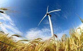 Picture field, power, energy, wind, wind turbine