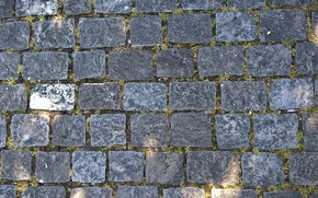 Picture wallpaper, grass, road, grey, texture, background, stones, paving-stones