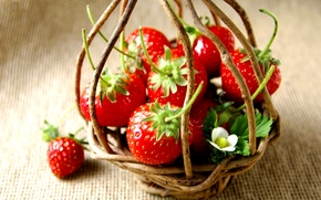 Picture background, color, blur, strawberry, berry, basket