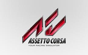 Picture background, logo, race, logo, game, simulator, assetto corsa, race simulator
