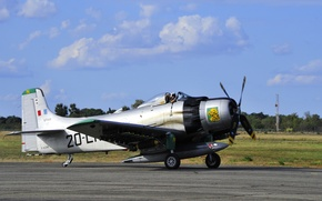 Picture aviation, Douglas, Skyraider