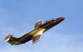"""Picture the plane, training, """"Dolphin"""", L-29 Delfin"""