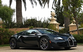 Picture Bugatti, Veyron, Carbon, Blue, Super, Sport, Edition