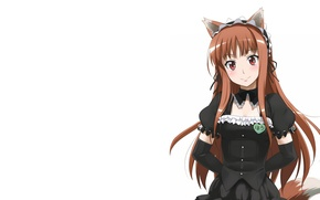 Picture Anime, Horo, Spice and wolf, Spice and Wolf, Horo, White background., A friend