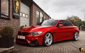 Picture BMW, Evolution, Line, F82, Akrapovic