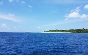 Picture beach, tropics, palm trees, the ocean, island, white sand, Maldives
