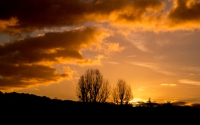 Picture Nature, Clouds, Tree, Sun, Sunset, Autumn, View, Scenery, Branches