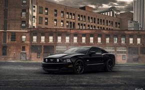 Picture Ford Mustang, EvoG Photography, Evano Gucciardo, XO Luxury Wheels