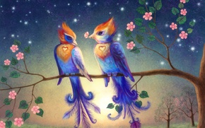Picture flowers, birds, branch, hearts
