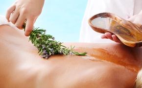 Picture honey, woman, back, massage