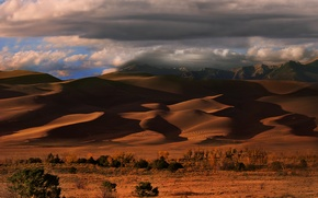 Picture sand, the sky, clouds, desert, barkhan, USA, colorado