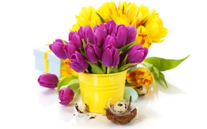 Picture flowers, flowers, spring, spring, easter, tulips