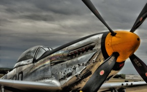Picture aviation, the plane, p51 mustang
