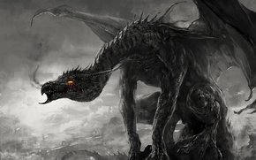 Picture black and white, dragon, smoke, monster, art, monochrome