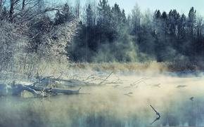 Picture fog, river, landscape, winter