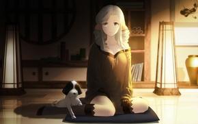 Wallpaper dog, art, anime, munechika, utawarerumono itsuwari no kamen, surprise, girl, cangkong, stockings