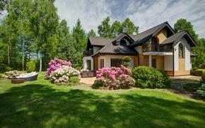 Wallpaper lawn, grass, the sun, summer, greens, house, the bushes, trees, garden, flowers
