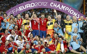 Picture gold, football, victory, Spain, the final, Cup, football, Fernando Torres, Spain, Champions, medals, Xavi, final, ...
