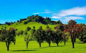 Picture the sky, grass, clouds, trees, hills, home