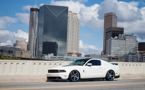 Picture Mustang, Ford, City, White