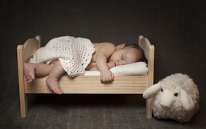 Picture children, toy, sleep, baby, sleeping, shawl, child, baby, sheep, cot
