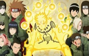Picture Kiba, game, Naruto, Sakura, anime, asian, manga, japanese, Naruto Shippuden, Hinata, oriental, jinchuuriki, asiatic, live …
