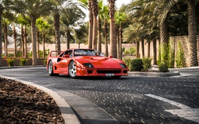Wallpaper road, palm trees, supercar, Ferrari F40, sports car