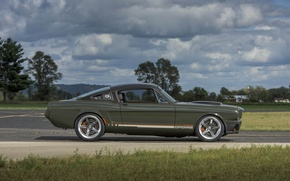 Picture mustang, dark, ford, side, with, view, clear, brushed, recoil, ringbrothers