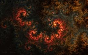 Picture fire, curls, fractals