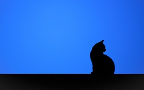 Wallpaper cat, background, minimalism, silhouette