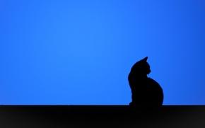 Wallpaper cat, minimalism, silhouette, background