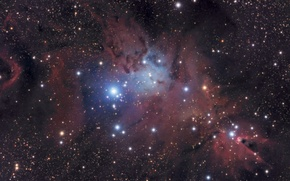 Picture space, Nebula, cluster Christmas Tree, Cone