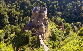Picture Bridge, Forest, Castle