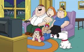 Picture cartoon, TV, family, family guy, family guy