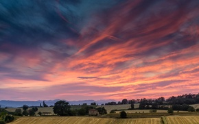 Picture field, sunset, Italy, Sunset, Tuscan