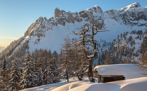 Picture winter, forest, snow, mountains, Austria, Alps, house, Torsten Muehlbacher photography