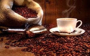 Picture Cup, drink, coffee, hot, saucer, bag, grain, scoop, spoon
