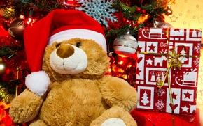 Picture bear, gifts, holiday, tree, Christmas, toys, new year, new year, christmas