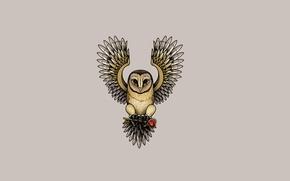 Picture owl, bird, heart, minimalism, key, owl