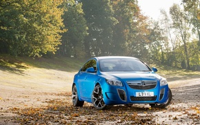 Picture Blue, Machine, The hood, insignia, Sedan, Vauxhall, The front
