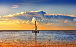 Picture sea, boat, the evening, sail